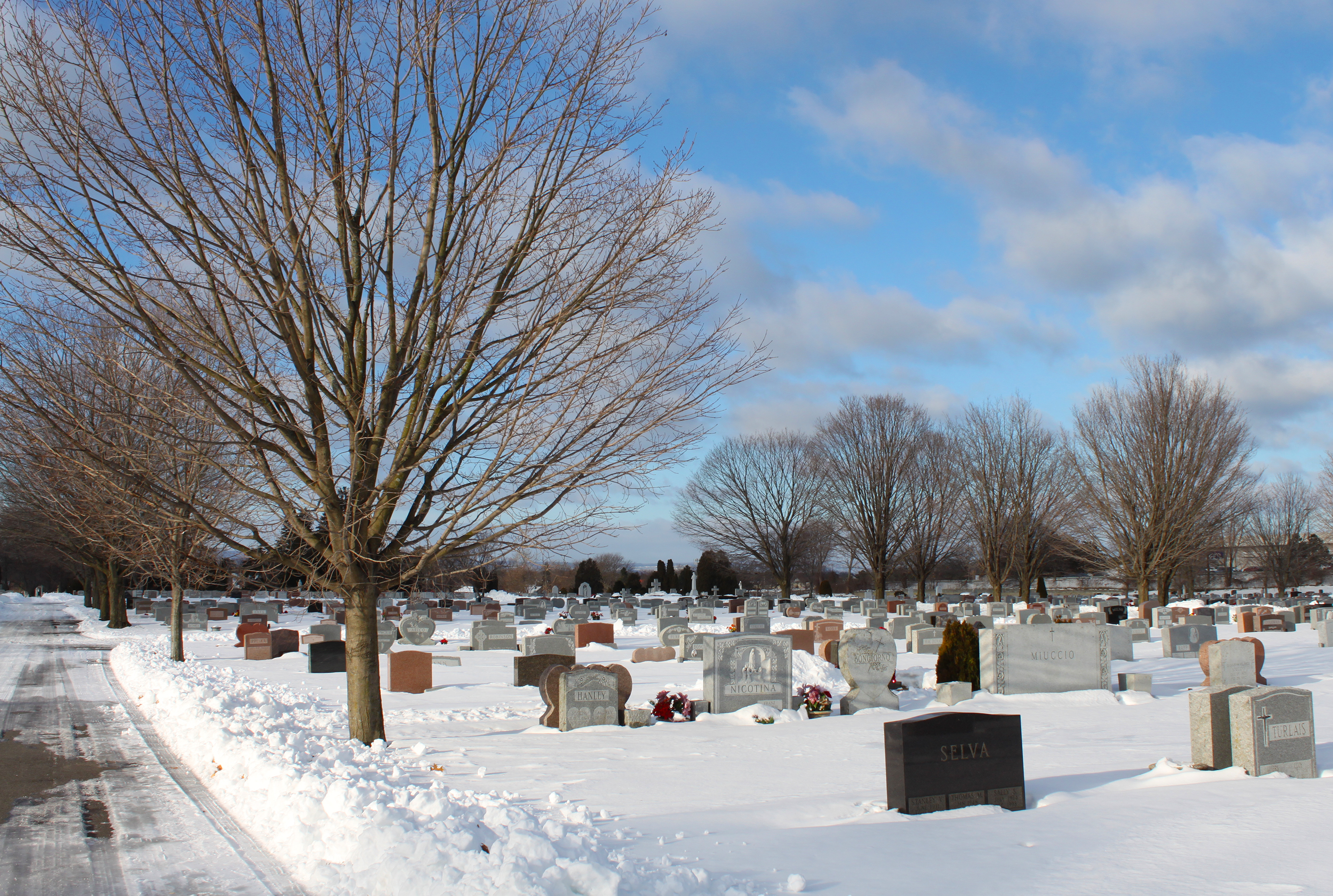Winter snow at Our Lady Of Angels Cemetery, Colonie NY