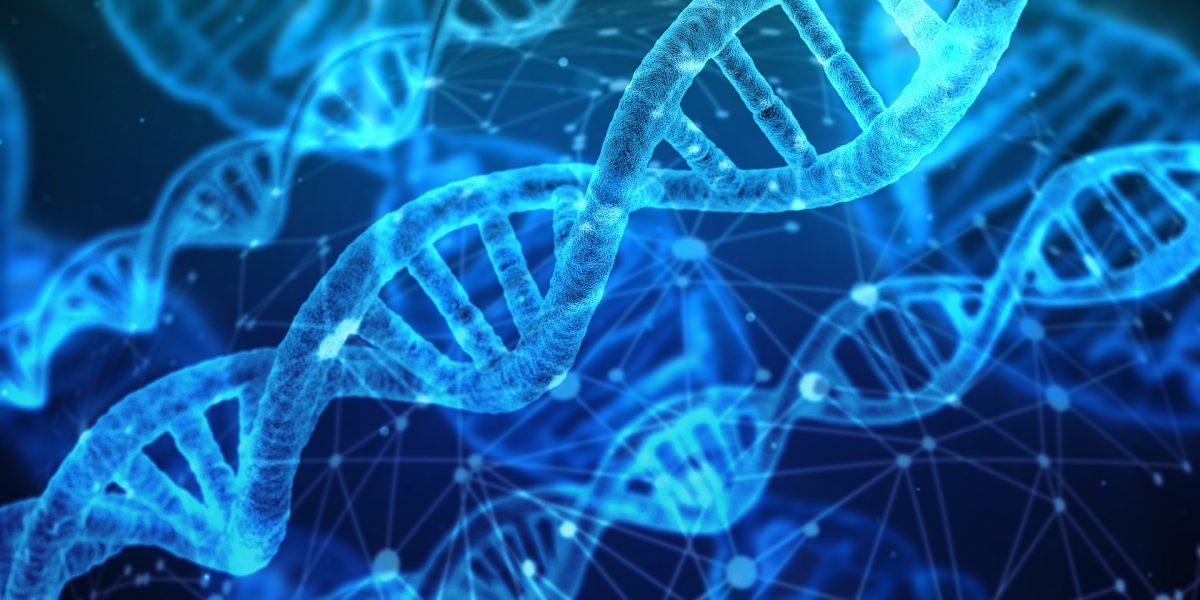Understanding your DNA