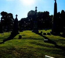David Roberts, St. Agnes, Menands